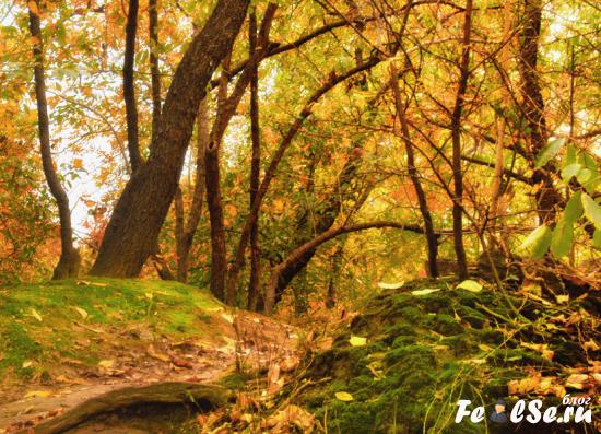 завершение сочинения про тему осень
